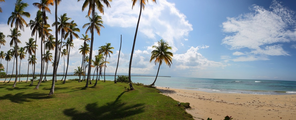 Tropicalia 3